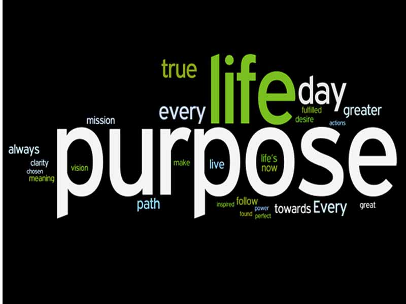 How to Do You Discover Your Purpose In Life?